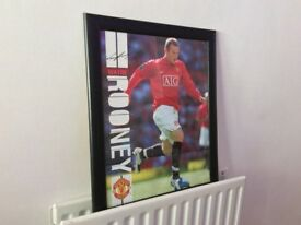 Collectible Autographed Wayne Rooney Manchester United