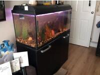 165ltr tank interpet aquatronic 100 fish tank with Stand, BIG FISH, all ornaments etc