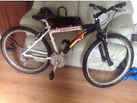 Peugeot boy mans 16inch frame 26 inch wheel mountain bike