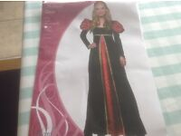 Fancy dress Ladies Medieval Queen outfit with free crown