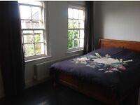 beautiful large double room available for lodger until Christmas
