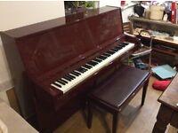 Steinhoff Piano - £600