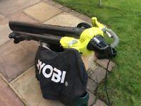 Ryobi garden vac/leafblower £30