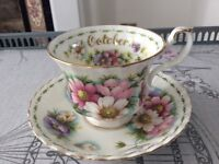 Royal Albert Bone China Cup & Saucer. Flower of the Month Cosmos October.