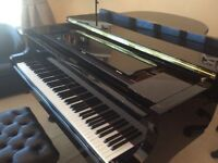 Piano Lessons - Fully Qualified Teacher - Yamaha Grand Piano - DBS Certificate - From £10 per lesson