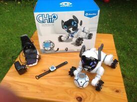 Dog robot Chip