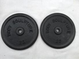 2 x 25lb (11.3kg) Bodysculpture Standard Cast Iron Weights