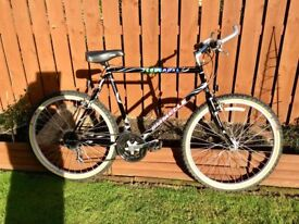 Emmelle Cougar XL Bicycle