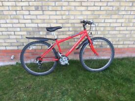 Raleigh firefly bike