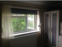 DOUBLE ROOM TO RENT IN HIGHWYCOMBE
