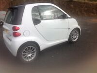 Beautiful 2011 Smart Car