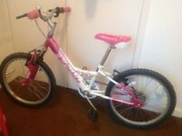 Girls bicycle (aged 4/8)