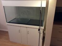 Bespoke aquarium 4 x 2 x 2 foot