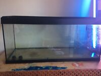 240 litres fish tank for sale