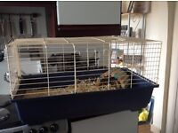 Indoor Guinea pig cage with accessories , possible free delivery