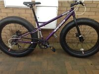 Coyote fatman mountain bike