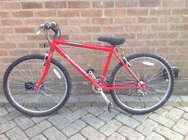 Boys Rayleigh Firefly Bike