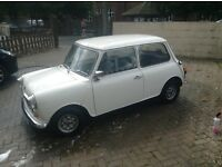 Beautiful classic mini for sale