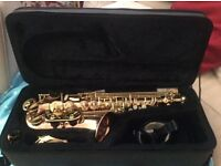 Notus AS22 Alto Saxophone