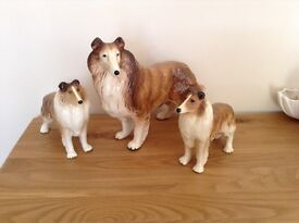 Cooper craft collie dogs