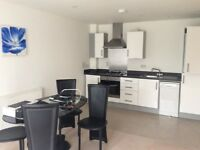 1 bed modern flat in Tilehurst RG30 4ER Clean and spacious with balcony Private Landlord