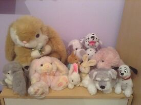Selection of 10 soft dogs and rabbits. All in excellent condition. Only £10