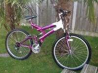 Ladies mountain bike size large.