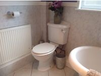 Toilet & sink - very good condition.