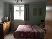 Lovely room to rent in Summertown