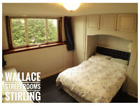 Bright Room Available To Rent in Quiet Flat