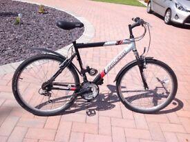 Gents Raleigh Resonator Mountain bike.