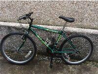Boy's mountain bike 24inch wheel