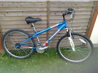 Young girls bike good condition