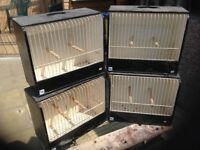 Budgie show cages