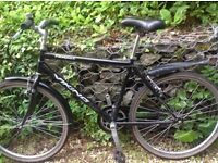 Excellent single speed bicycle