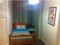 Lovely Single Room in Royal Oak (Zone 1)