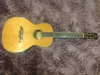 Alvarez electro acoustic guitar with hard case.