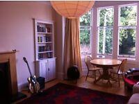 2 bedroom flat in Marchmont for rent, spacious living room, en-suite bathroom & large kitchen