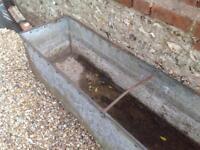 Metal trough planter
