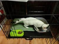 Cat/dog crate