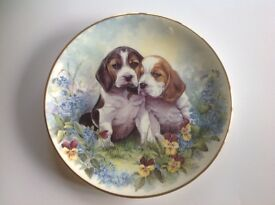"""Cute puppies wall plate. 8"""" diameter. Secure hanger on back. Perfect condition. £3.50"""