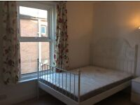double room for a foreign student or worker near charminster high street