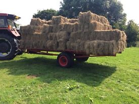 Hay, Ideal for horse, Guinea pigs, rabbits etc!