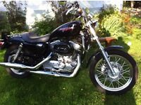 Harley Davidson Sportster 883. 2006, black , low miles, full luggage included. Possible px BMW GS...