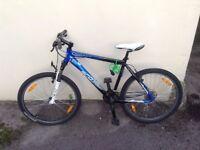 Scott Mountain Bike - Cheap to a Good Home