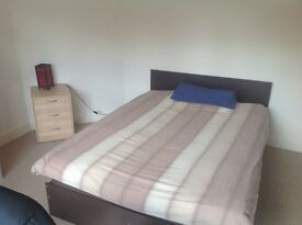 Lovely Double Room Available