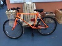 Gemini Outrider, Mens Mountain Bike (Orange).