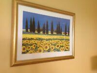 Stunning Sunflower Print