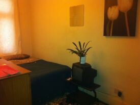 Spacious room ideal for 2 people. Stratford London Zone 2 / Westfield Shopping, / WiFi . Garden