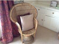 Beach or garden or indoors chair